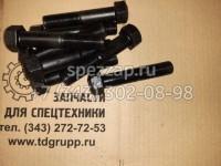 ТЖ203-22-003 Болт замыкающий ЧАЗ Т-11.01